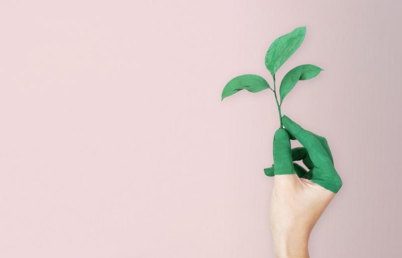 środki czystości a ekologia